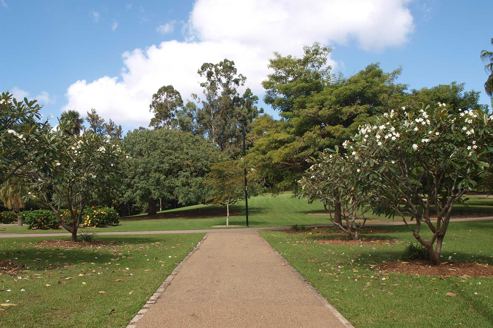 Brisbane City Botanical Gardens